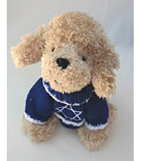 PENNY POODLE WEARING BLUE STAR OF DAVID SWEATER
