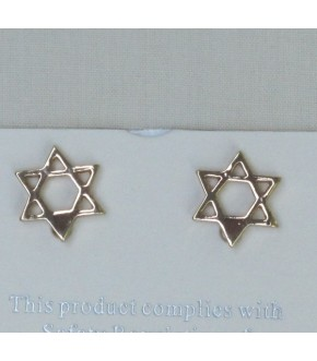PETITE GOLDEN STAR POST EARRINGS